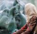L'islam français entre agitation et discorde