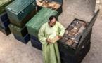 Patrimoine de Tombouctou : Abdel Kader Haïdara, un héros si discret