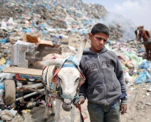 6 avril 2015, dans une décharge publique à Rafah, au sud de la bande de Gaza, un jeune palestinien fouille dans un tas de déchets à la recherche, entre autres, d'objets recyclables qu'il espère vendre (AFP).