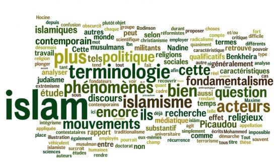 L'Islam réformiste en France : des débats numériques à l'espace socio-religieux