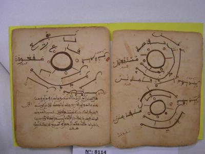J'irai dormir dans nos Mosquées, réfutation de l'Islamophobie scientifique & manuscrits en péril