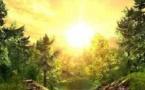 La « pérégrination » comme méthode spirituelle chez les soufis