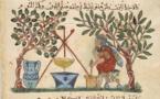 Médecine et santé dans la poésie arabe médiévale : Un examen historique